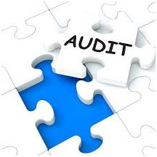 La importancia de la Auditoría Interna para una organización