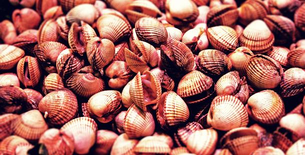 El 68% de los alimentos marinos tienen microplásticos